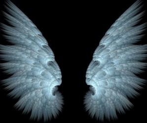 Soñar con alas