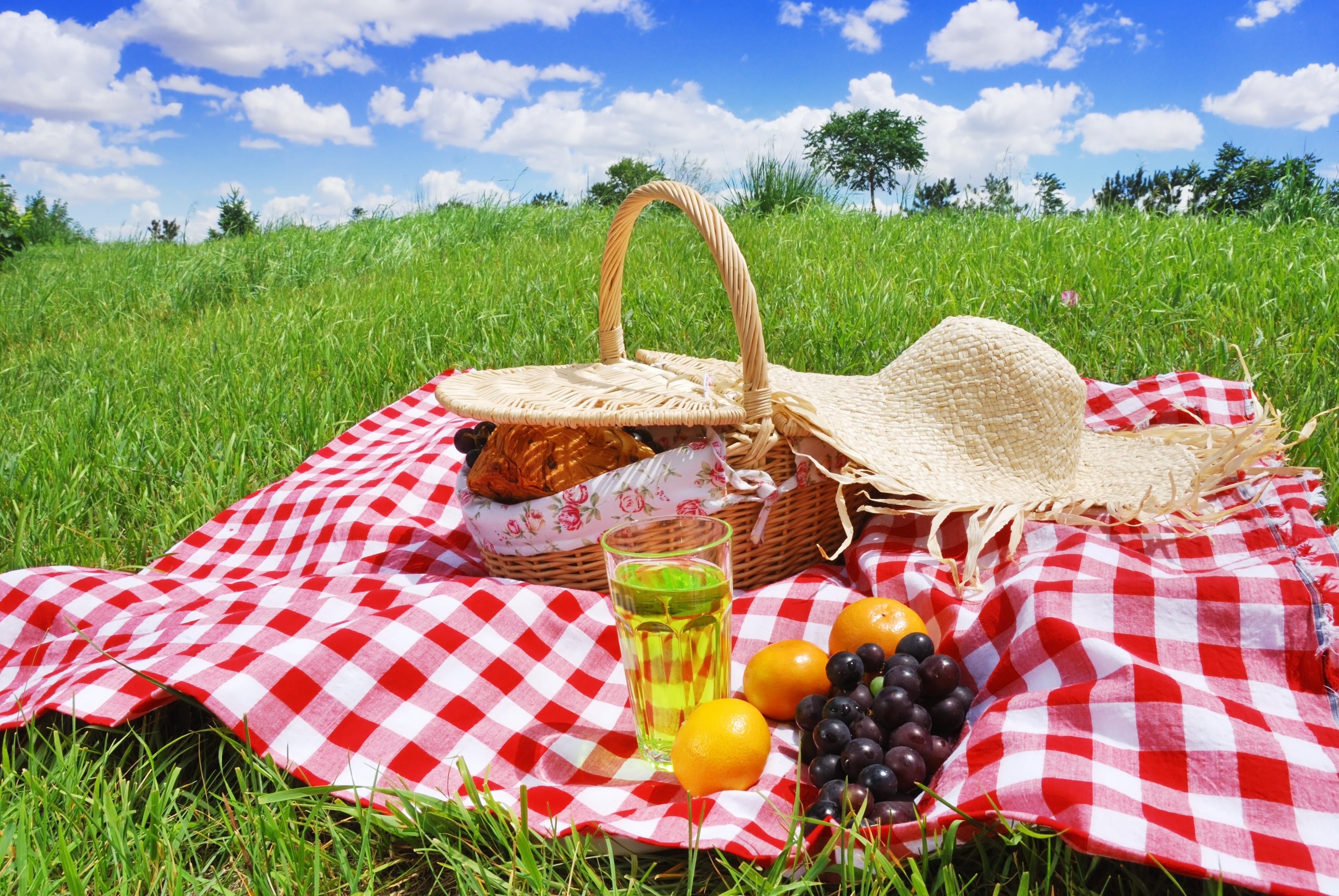 sonar-con-un-picnic