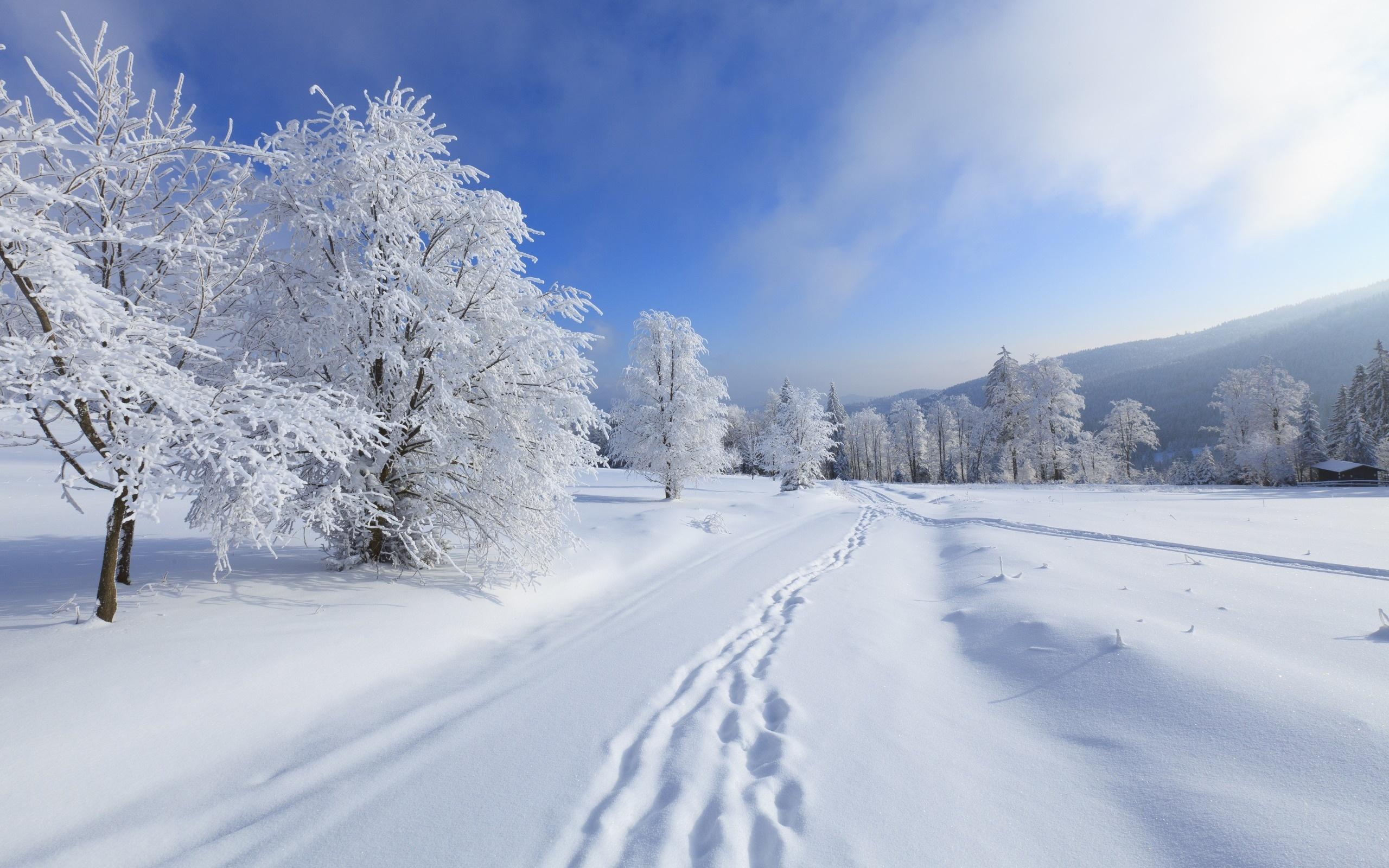 Soñar con Nieve