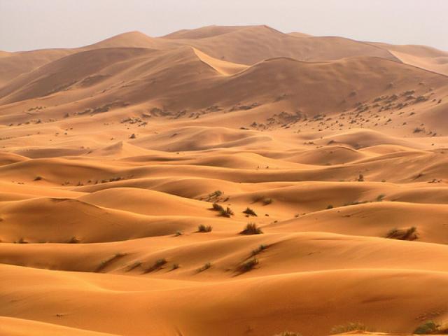 Soñar con desiertos