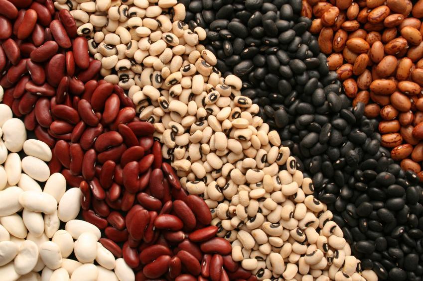 Resultado de imagen para granos